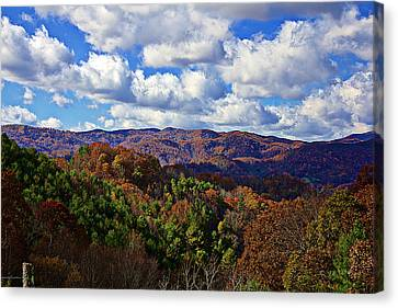 Late Autumn Beauty Canvas Print by Tom Culver