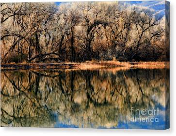 Late December Reflection At Dead Horse Canvas Print