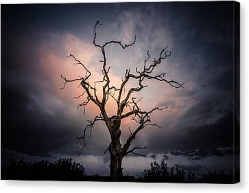 Late Evening Cloud Display Canvas Print by Chris Fletcher