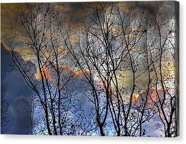Late Fall Sunrise Canvas Print