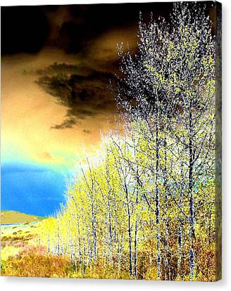 Vista Canvas Print - Late Fall Tree Line by Will Borden