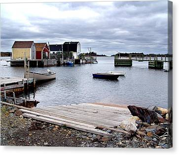Late October In Blue Rocks Canvas Print by George Cousins