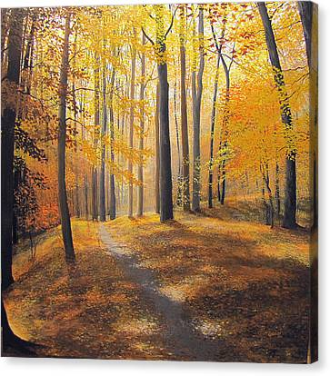Late October Light And Shadow Canvas Print by David Bottini