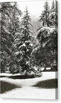 Canvas Print featuring the photograph Late Season Snow At The Park by Gary Slawsky
