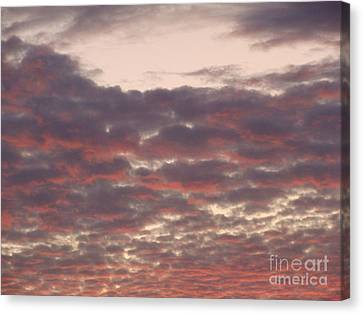 Late Summer Evening Sky Canvas Print