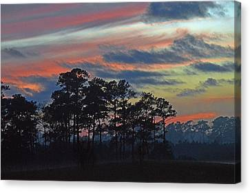 Canvas Print featuring the photograph Late Sunset Trees In The Mist by Bill Swartwout