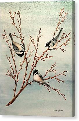 Late Winter Chickadees Canvas Print by Gina Gahagan