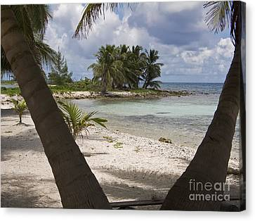 Laughing Bird Caye Canvas Print