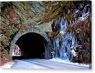 Laurel Creek Road Tunnel Canvas Print by Paul Mashburn