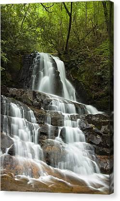 Laurel Falls Cascades Canvas Print by Andrew Soundarajan