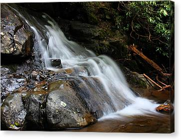 Laurel Falls Great Smoky Mountains Canvas Print by Jerome Lynch