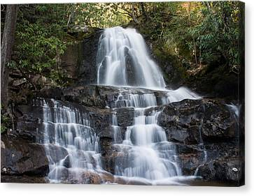 Canvas Print featuring the photograph Laurel Falls by Jay Stockhaus