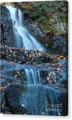 Canvas Print featuring the photograph Laurel Falls by Patrick Shupert