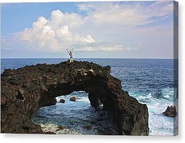 Lava Sea Arch In Hawaii Canvas Print by Venetia Featherstone-Witty