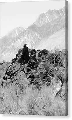 Canvas Print - Lava-white Mountains II  by Harold E McCray