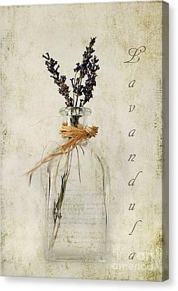 Zen Digital Art Canvas Print - Lavandula / Lavender by Darren Fisher