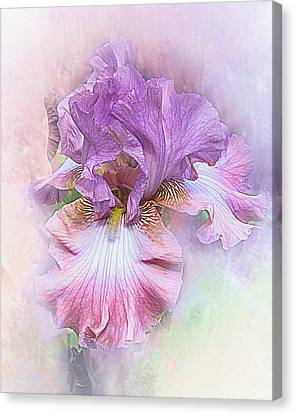 Canvas Print featuring the digital art Lavendar Dreams by Mary Almond