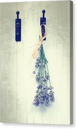 Lavender Canvas Print by Amanda Elwell
