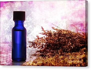 Lavender Essential Oil Bottle Canvas Print by Olivier Le Queinec