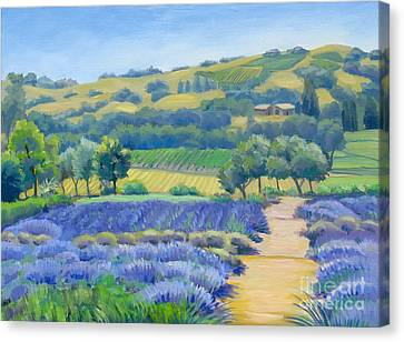 Lavender Field Canvas Print by Dominique Amendola