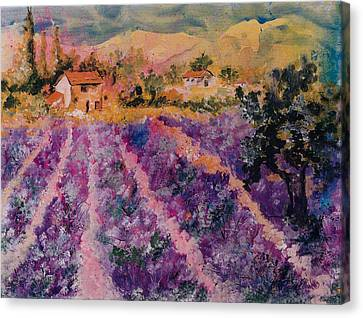 Lavender Fields In Provence Canvas Print