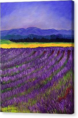 Canvas Print featuring the painting Lavender Fields by Janet Greer Sammons