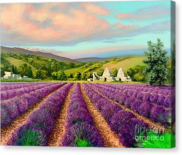 Lavender II Canvas Print by Michael Swanson