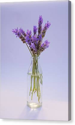 Canvas Print featuring the photograph Lavender In Glass Vase by Jocelyn Friis