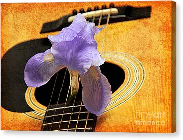 Lavender Iris And Acoustic Guitar - Texture - Music - Musical Instrument Canvas Print