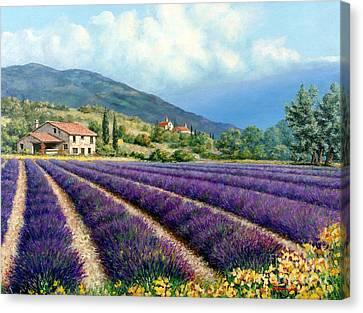 Lavender Canvas Print by Michael Swanson