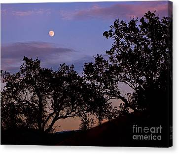 Lavender Moon Twilight Canvas Print by Gem S Visionary