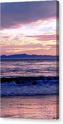 Canvas Print featuring the photograph Lavender Sea by Sue Halstenberg
