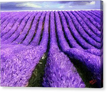 Lavender Straight Canvas Print