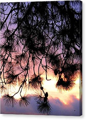 Lavender Sunset Painting Canvas Print by Will Borden