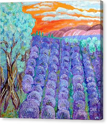 Lavender  Canvas Print by Vicky Tarcau