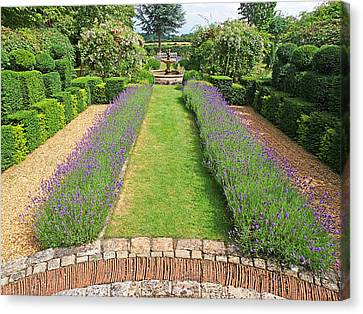 Lavender Walk Canvas Print by Gill Billington