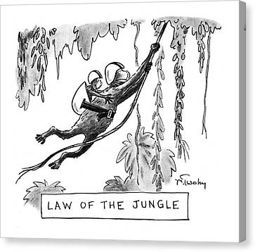 Law Of The Jungle Canvas Print by Mike Twohy