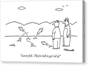 Lawn Fish.  They're Hell To Get Rid Of Canvas Print by Charles Barsotti