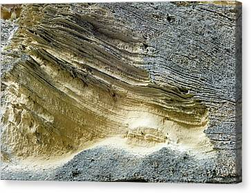 Layered Calcareous Sandstone Canvas Print by Dr Jeremy Burgess