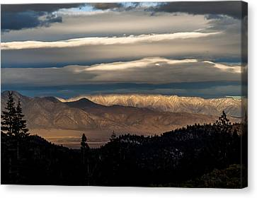 Layers Canvas Print by Cat Connor