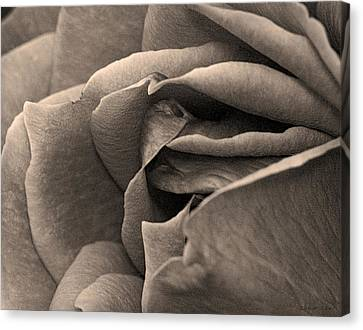 Canvas Print featuring the photograph Layers Unfurled  by Robert Culver