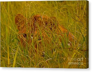Canvas Print featuring the photograph Laying In The Grass by J L Woody Wooden
