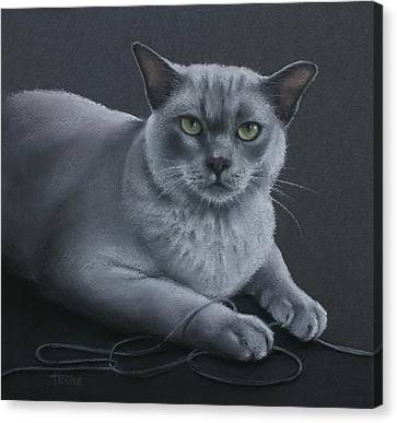 Canvas Print featuring the pastel Layla by Cynthia House