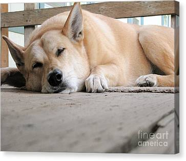 Lazin' On The Porch Canvas Print by Rory Sagner