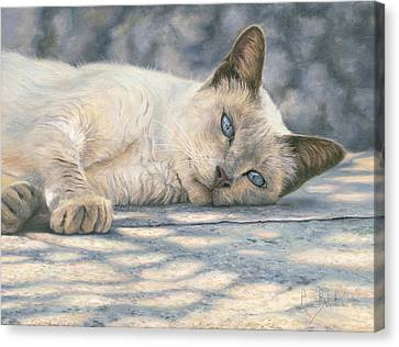 Cat Canvas Print - Lazy Afternoon by Lucie Bilodeau