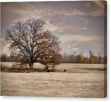 Lazy Autumn Day - Farm Landscape Canvas Print by Jai Johnson