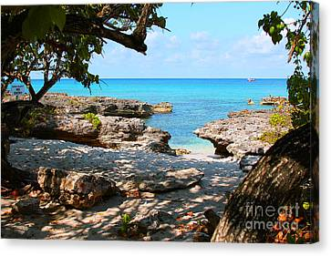 Lazy Cove Canvas Print by Carey Chen