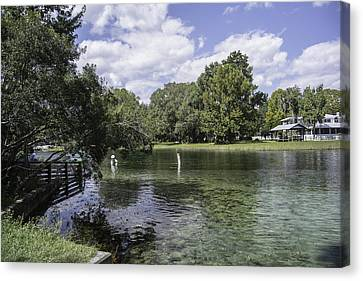 Dunnellon Canvas Print - Lazy Day On The Rainbow River by Judy Hall-Folde