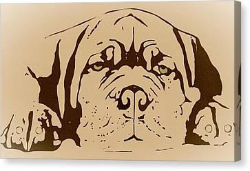 Lazy Dog Canvas Print by Cindy Edwards