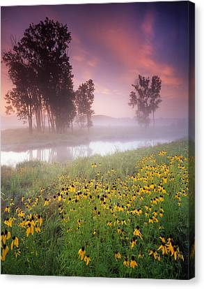 Lazy Susanne Sunrise Canvas Print